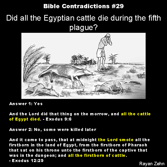 contradicting creation stories in the bible essay 2017-12-16  most people don't realize it, but there are two (yes, count 'em two) different and contradictory stories of creation in genesis, the first book of the bible.