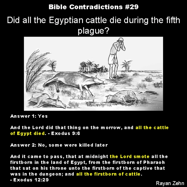 Bible contradictions 29